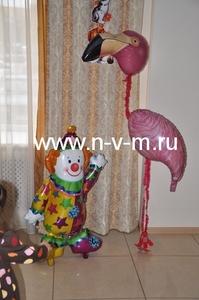 ходячок фламинго