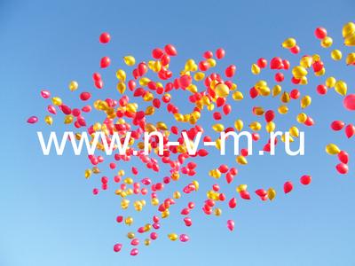 Запуск, выпуск в небо гелевых шаров (500 шт)