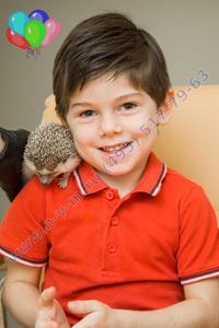 ежики на детский праздник