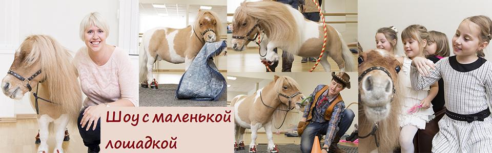 шоу с маленькой лошадкой